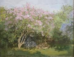 Lilac in the Sun