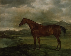 Portrait of a hunter in landscape