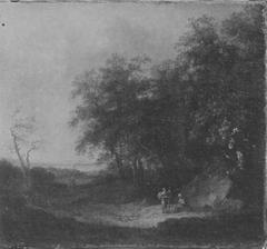 Rand eines Eichenwaldes