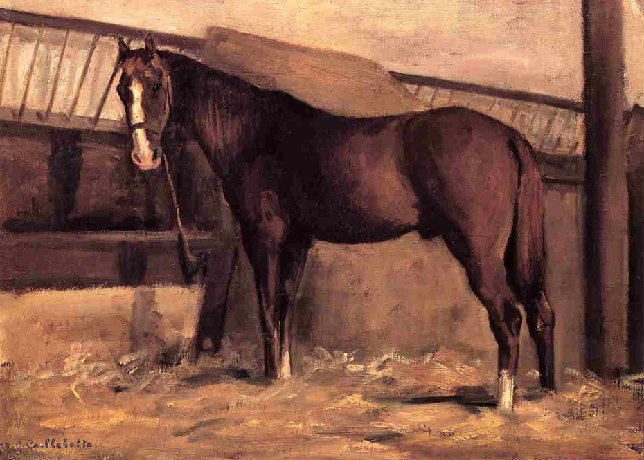 Reddish Bay Horse in the Stable