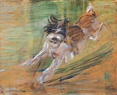 Springender Hund