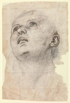 Study of the Head of a Youth Gazing Upward