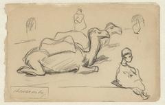 Twee kamelen en een zittende jongen