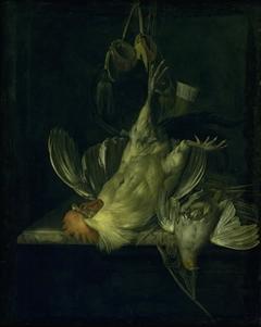 A Dead White Cock