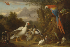 A Macaw, Ducks, Parrots and Other Birds in a Landscape