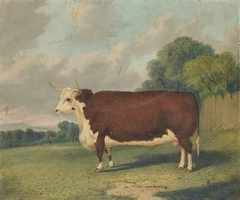A Prize Bull in a Landscape