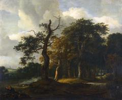 A Road through an Oak Wood