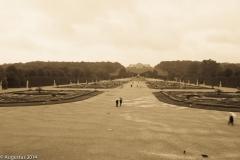 Brandenburg Palace