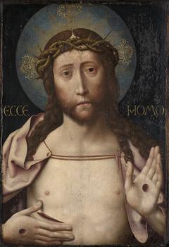 Christus, seine Wundmale zeigend
