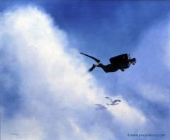 CIEL, UNE MOUETTE ! II - O God, a seagull, II - by Pascal