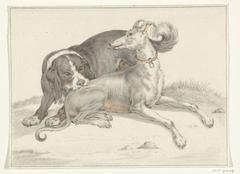 Een hond bijt een andere zittende hond in de rug