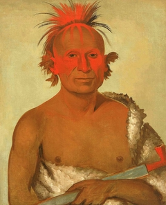 Pash-ee-pa-hó, Little Stabbing Chief, the Younger, One of Black Hawk's Braves