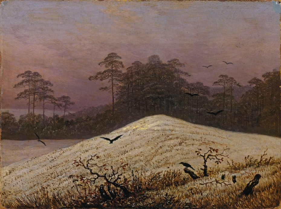 Snow hill with Ravens