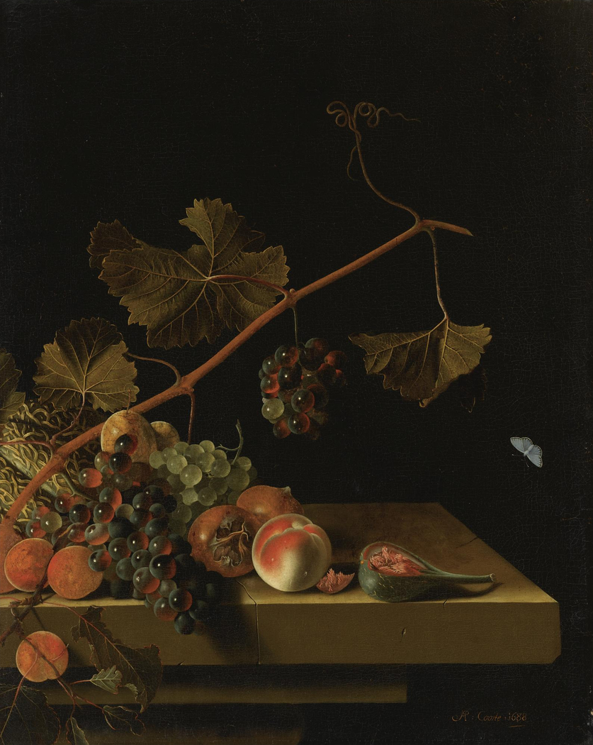 Still life with fruit and a grapevine