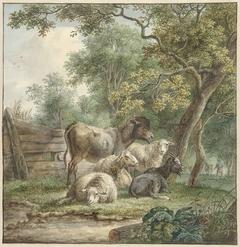 Vee in een boomgaard