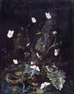 A forest floor with snakes and butterflies