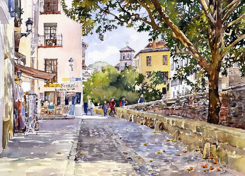 Acer del Darro, Granada