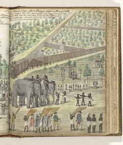 'Baptizing' an elephant