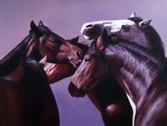 Equine five