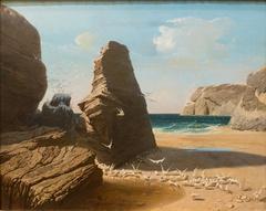 Les petites mouettes, rivage de Belle-Isle en mer, Port-Donan