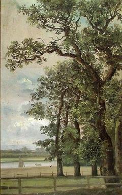 Oak Trees by River