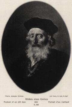 Oval Portrait of a Bearded Old Man