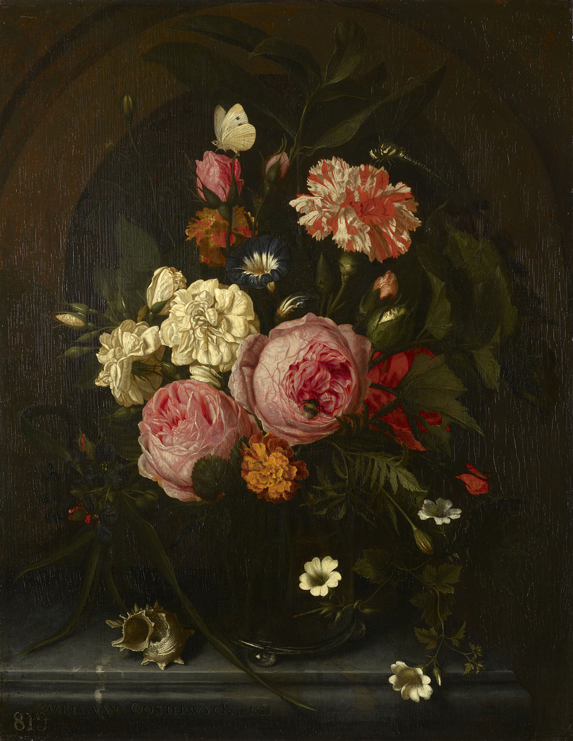 Still Life with Flowers, Insects and a Shell