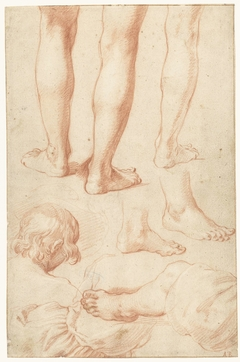 Study of legs, and the torso of a boy