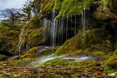 Waterfall Scene Near Waltonhurst
