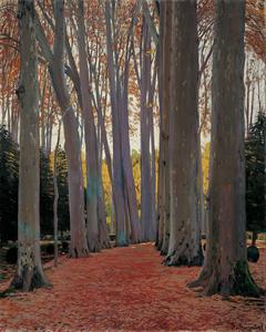 Avenue of Plane Trees