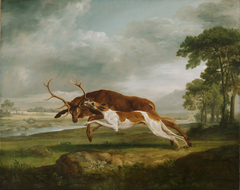 Hound Coursing a Stag