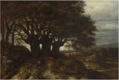 Landscape with three pollard willows