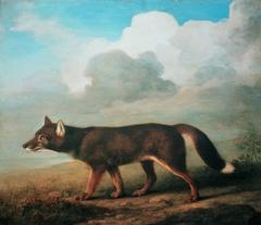Portrait of a Large Dog