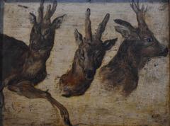 Roebucks heads