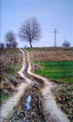 Rural road in early spring-1