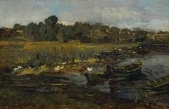 Schilflandschaft am Schwielowsee mit Enten