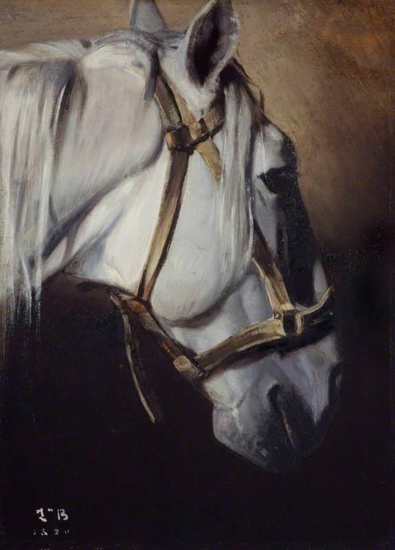 Tête du cheval blanc [Head of a white horse]