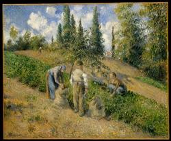 The Harvest, Pontoise (La Récolte, Pontoise)