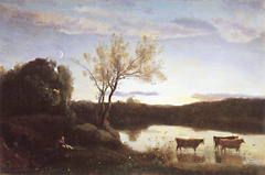The Pond, Three cows and a Crescent Moon