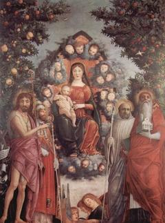 Trivulzio Madonna