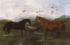 Two hunting horses in landscape