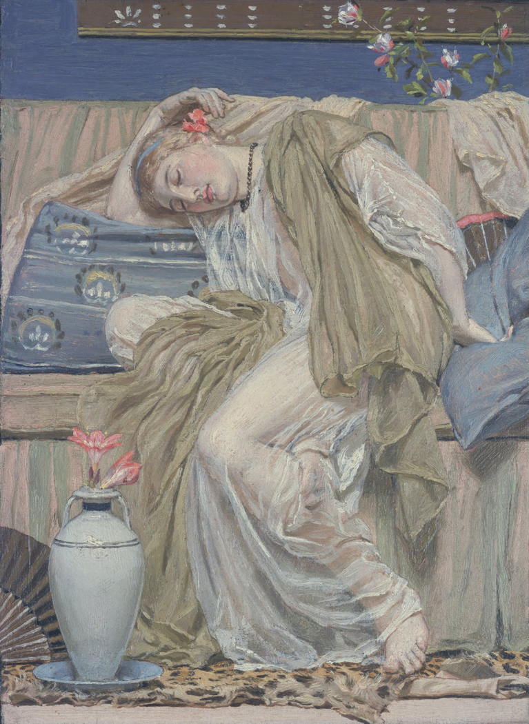 A Sleeping Girl