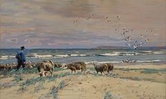 At the Baltic Sea beach