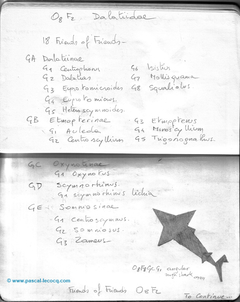 Carnet Bleu: Encyclopedia of…shark, vol.I p40 by Pascal