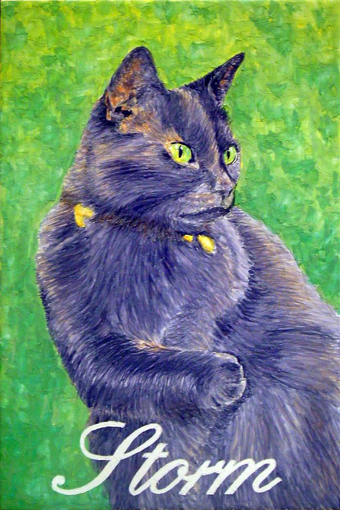 """Cat portrait """"Storm"""""""
