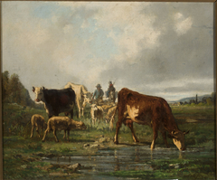 Cattle at the waterhole