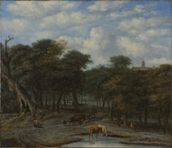 Forest Clearing with Cattle
