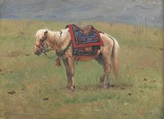 Himalayan Ponies