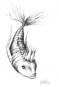King Fish / Kral Balık