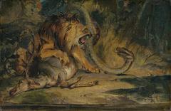 Lion Defending its Prey
